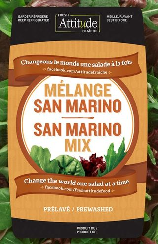 San Marino Mix - Changing the World